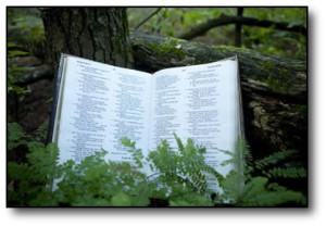 bible01